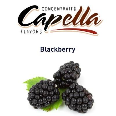Capella Blackberry - фото 7089