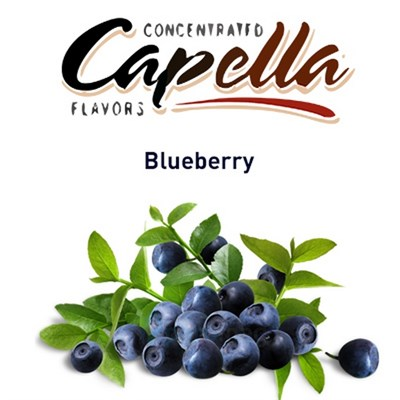 Capella Blueberry - фото 7090