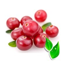 Клюква натуральная / Cranberries natural(БФ) - фото 7623