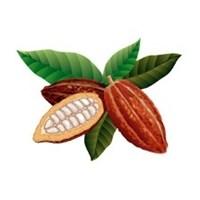 Жидкость SM Какао-бобы
