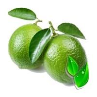 Лайм / Lime(БФ)