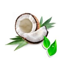 Кокосовый / Coconut style(БФ)